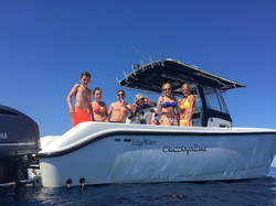 Boat Trips and Daily cruises