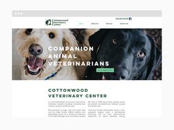 Veterinarians Web Design Sample