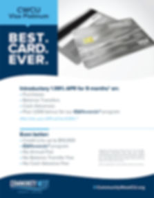 Visa Platinum_Flyer
