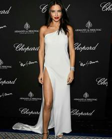 Victoria Secret Supermodel Adriana Lima at Creatures Of The Night Late-Night Soiree