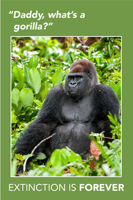 Extinction Series – Gorilla