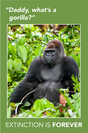 Extinction Series – Gorilla