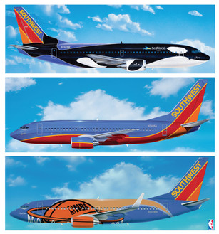 SWA Special Planes