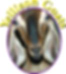 Yellison logo.png