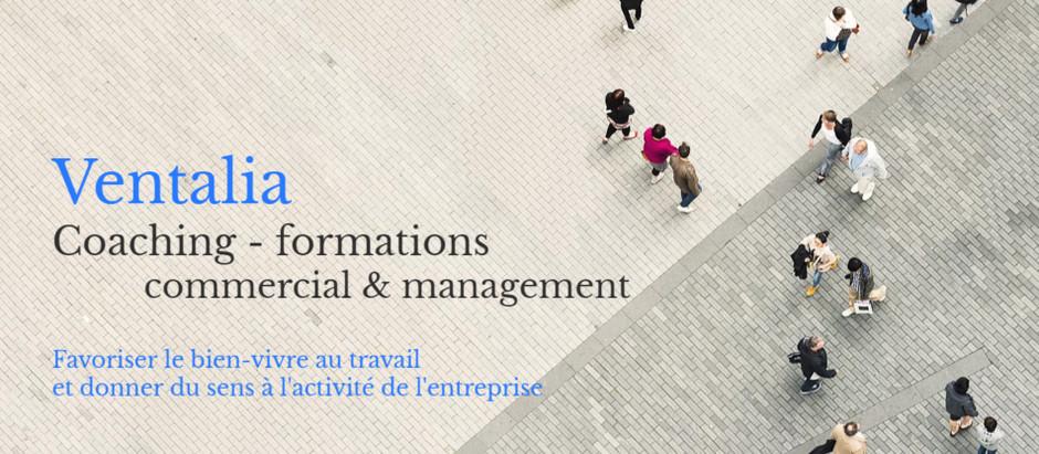 Article du 17/04/20, blog Proactif, travail temporaire (merci à Sarah Fournier & Claire Goutines)