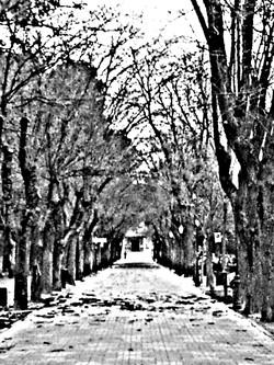 PicsArt_1387903038991.jpg