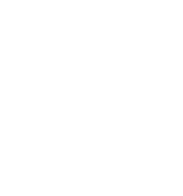 puzzle_white.png