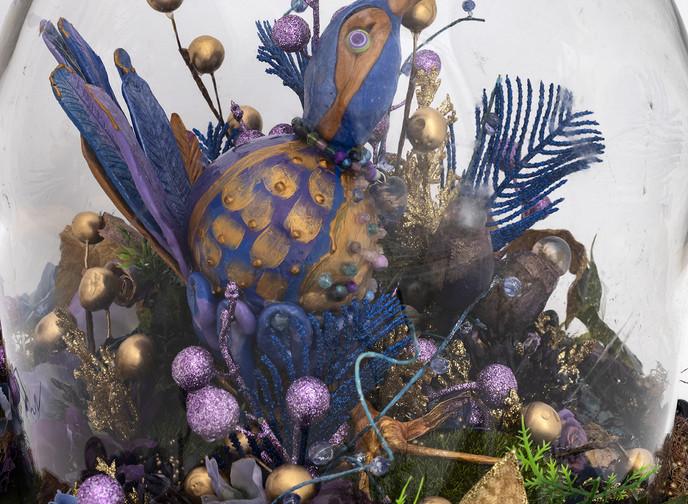 'Last of its Kind: GALLINULA maleficis artibus'