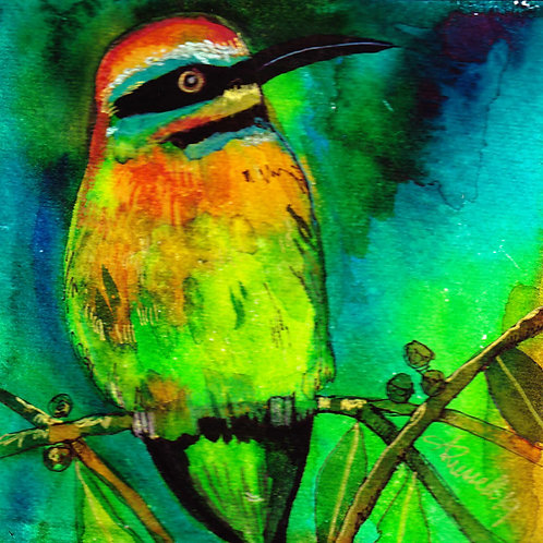 'Bee Eater'