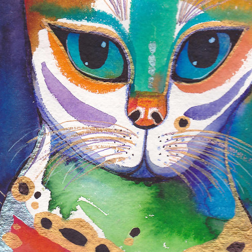 'Colourful Cat'