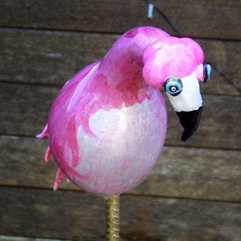'Fearless Flamingo'