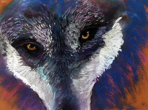 'Her Wild Archetype'