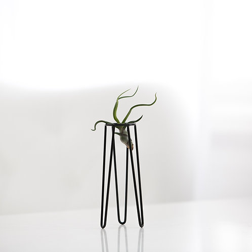 Table Tower S + air plant
