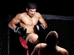 LAS MEJORES CLASES DE MMA DE MADRID