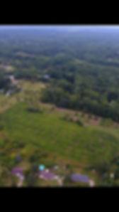 Aerial maze.jpg