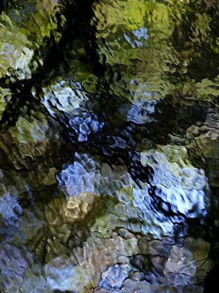 Frömbgen, Joachim - Wasserspiegelung II/Foto