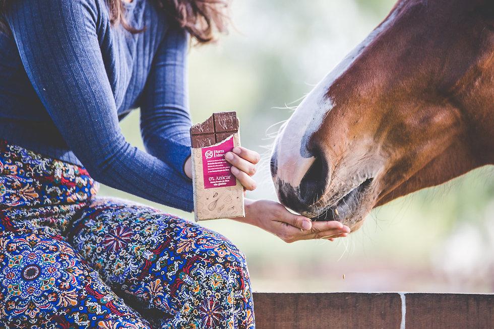 Equipo de nutricionistas crean nuestros productos sin azúcar y sin gluten. Sabores sin Culpa, pastelería vegana saludable.