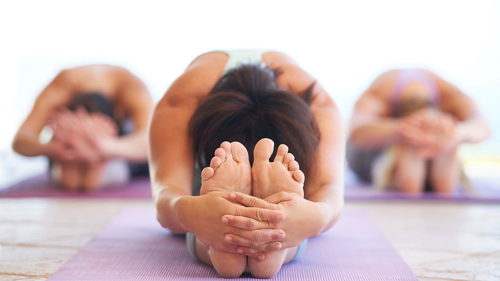 Yoga 2 Pack