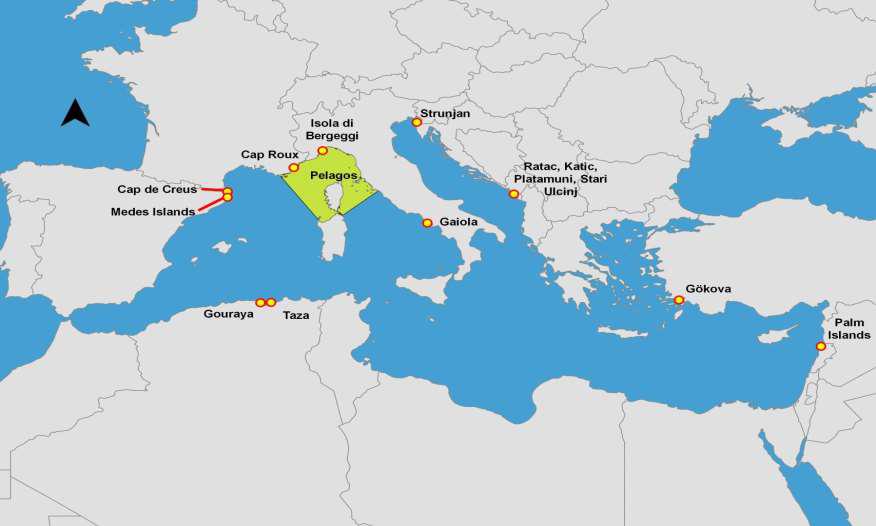 Cartina progetti 2014