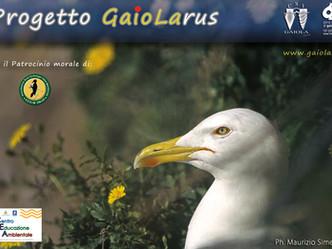 Progetto GaioLARUS
