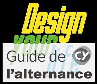 formation designer alternance