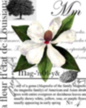 La Magnolia Final.jpg