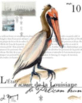 la pelican 10.JPG
