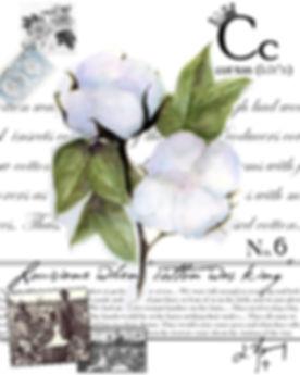 copy of la cotton final janway.JPG
