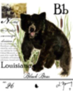louisiana black bear-2.JPG