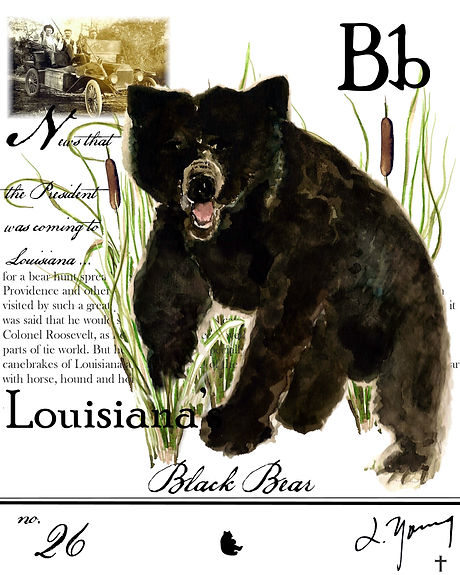 louisiana black bear-2.JPG