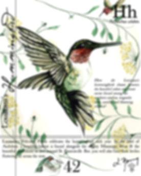 LA Hummingbird.jpg