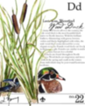 louisiana wood duck final-2.JPG