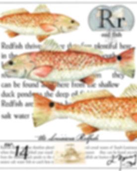 La redfish.jpg