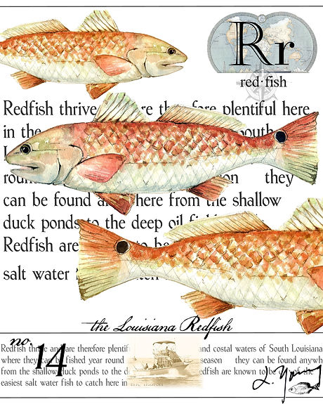 La redfish.jpg
