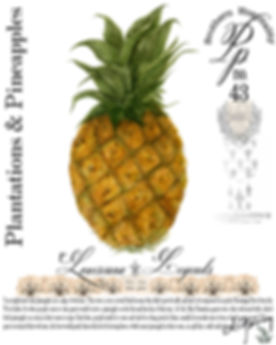 LA Pineapple Final.jpg