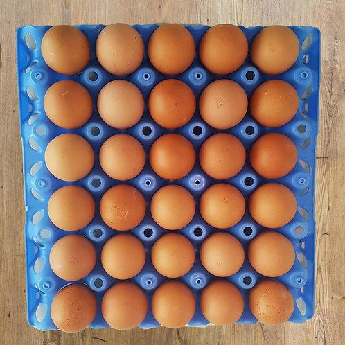 30 Large Fresh Free Range Eggs (1 Tray)