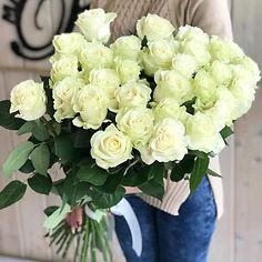 белые розы.jpg
