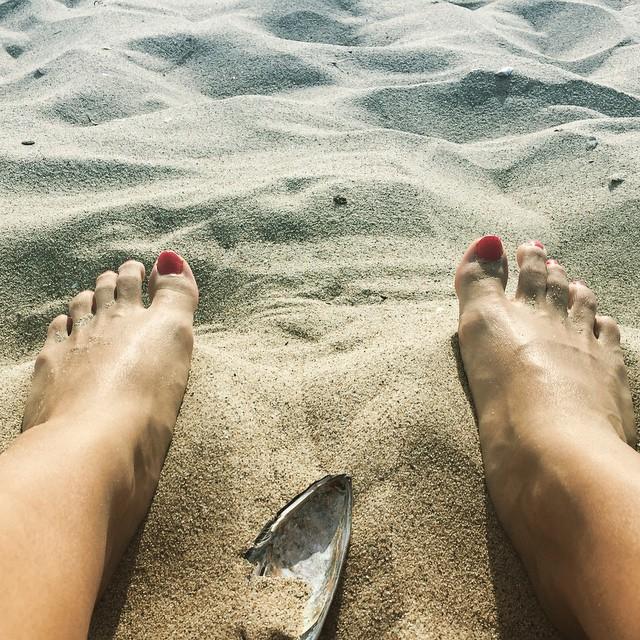 Venice Beach, California ☀️ ************************************************ @queroharmonia, A bette