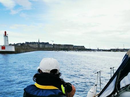 Tidentörn in Bretagne und Normandie