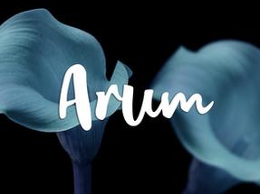 Les personnages: Arum