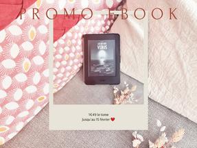 Ebooks en promotion!