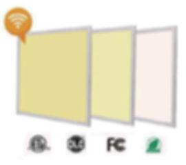 CCT panel.jpg