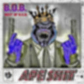 BOB_Cover resize.jpg