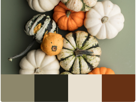 Inspiring Fall Color Palettes