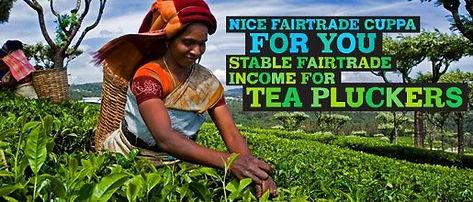 fair-trade-tea-pluckers.jpg