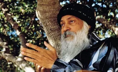 Wild Wild Country - Review