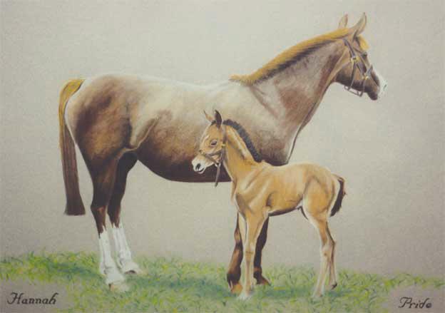 horse-pastel-portrait-6