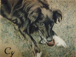 dog-Pastel-portrait-5
