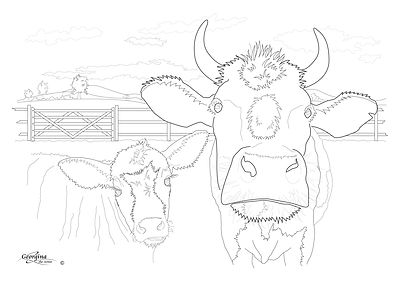 Cyn's-Cow-and-Calf.jpg