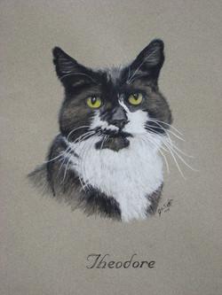 Cat-Pastel-portrait-4